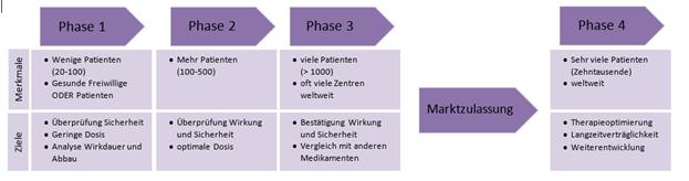 Schema zeigt Phasen Klinischer Studien